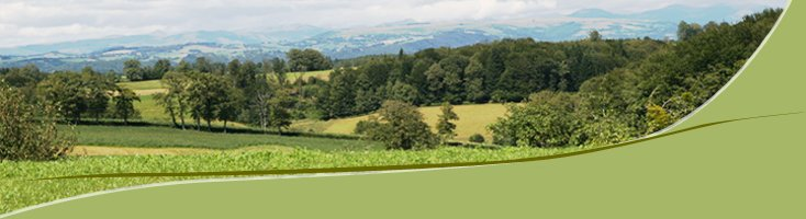 Paysage du Cantal à Imbert